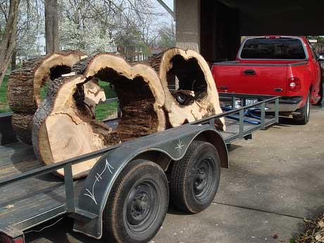 tree-trailer.jpg
