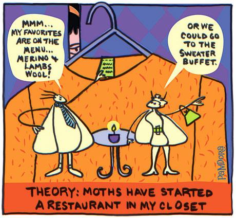 moth_diner.jpg
