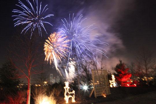 fireworks-firstnight2