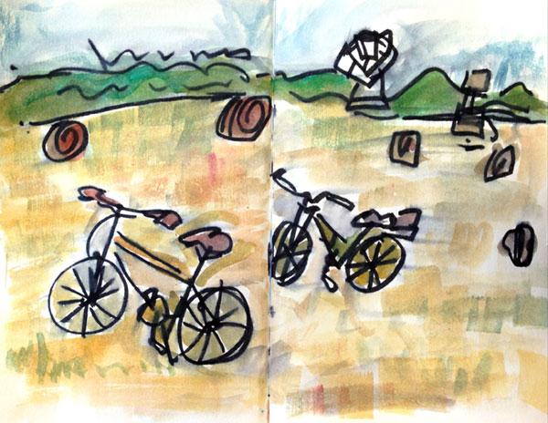 Bikes-in-Field